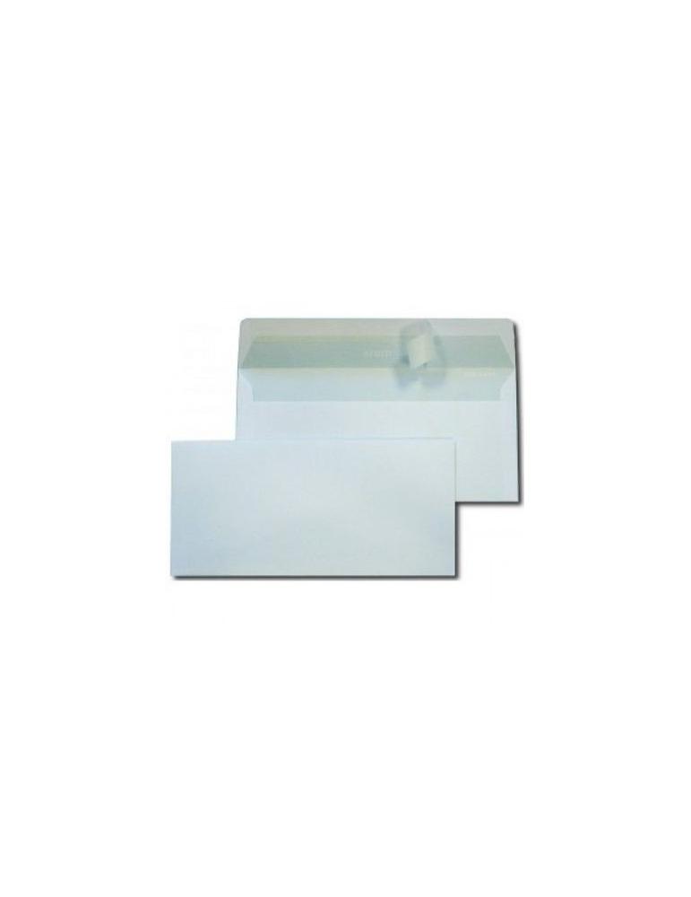 Busta Edera 11x23 con Strip Adesivo S/Fin Conf. 500 Pezzi