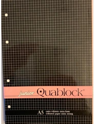 Ricambio Quablock A5 Fogli a Buchi 4 MM 80 Gr. colore Rosa