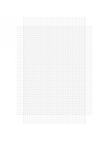 Fogli Protocollo Quadretto Q 0,5 cm con Margine Confezione 20 pz.